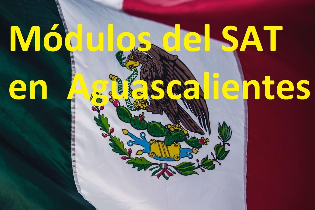 Sacar cita en el SAT Aguascalientes